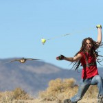 Beckie Lure flying Barbary Falcon